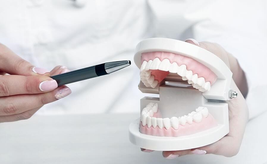 何謂牙齦增生、萎縮介紹-wecare康世維